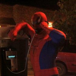 Toronto Spider-Man