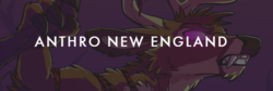 Anthro New England 2019