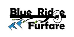 Blue Ridge Furfare 2020